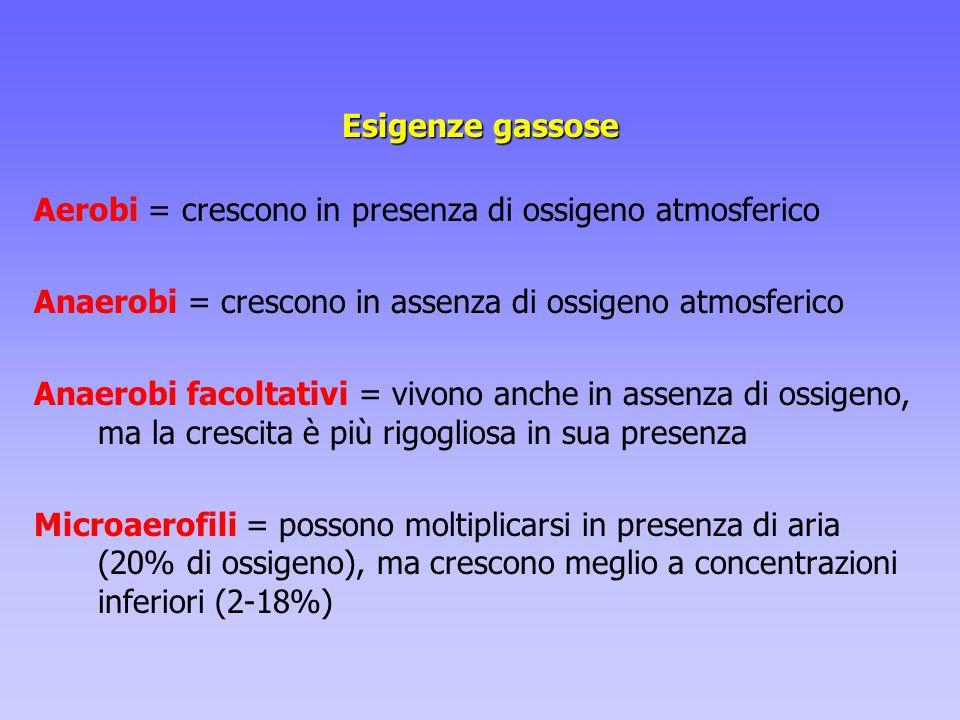 Esigenze gassose Aerobi = crescono in presenza di ossigeno atmosferico. Anaerobi = crescono in assenza di ossigeno atmosferico.
