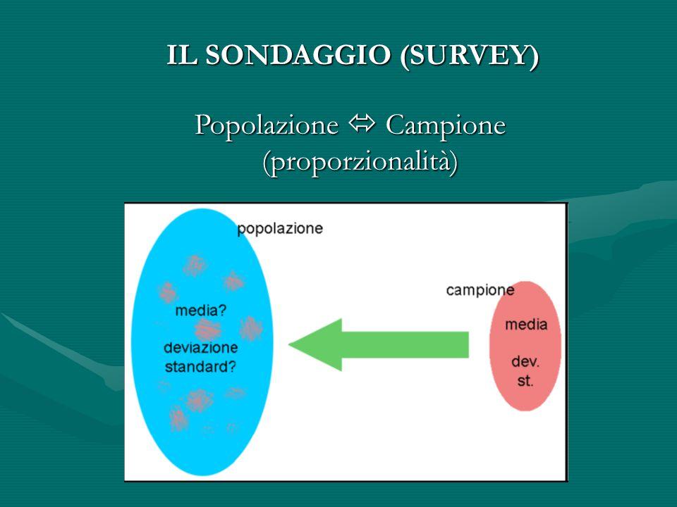 IL SONDAGGIO (SURVEY)