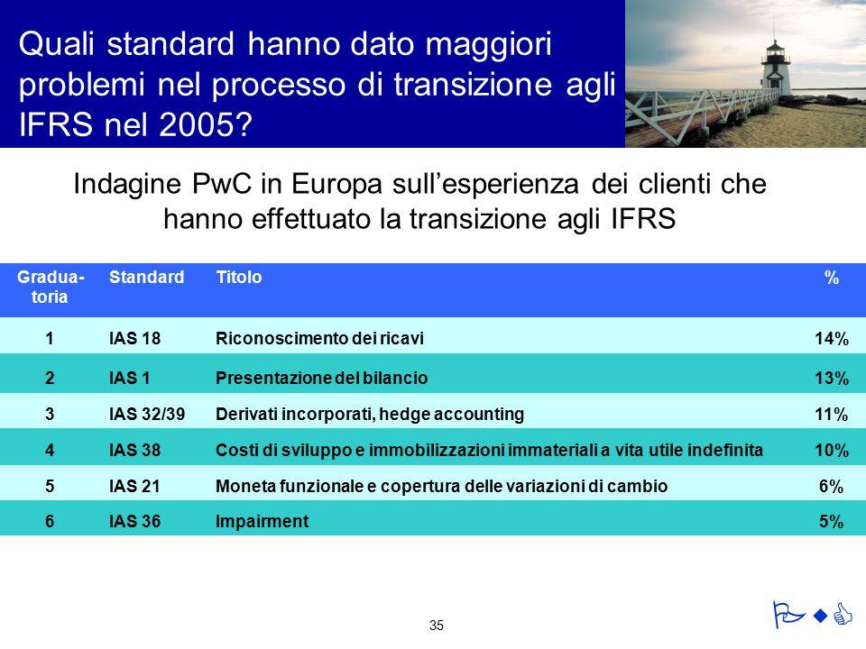 Quali standard hanno dato maggiori problemi nel processo di transizione agli IFRS nel 2005