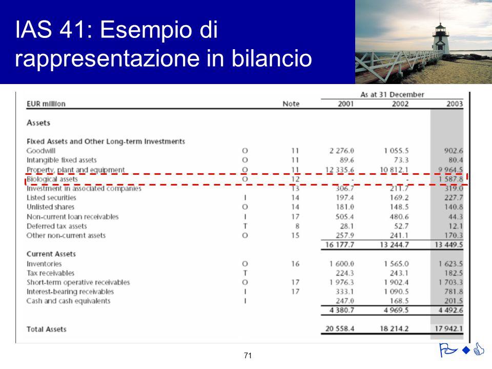 IAS 41: Esempio di rappresentazione in bilancio