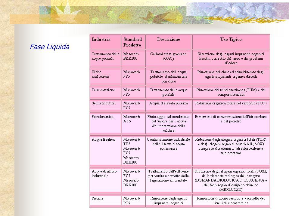 Fase Liquida