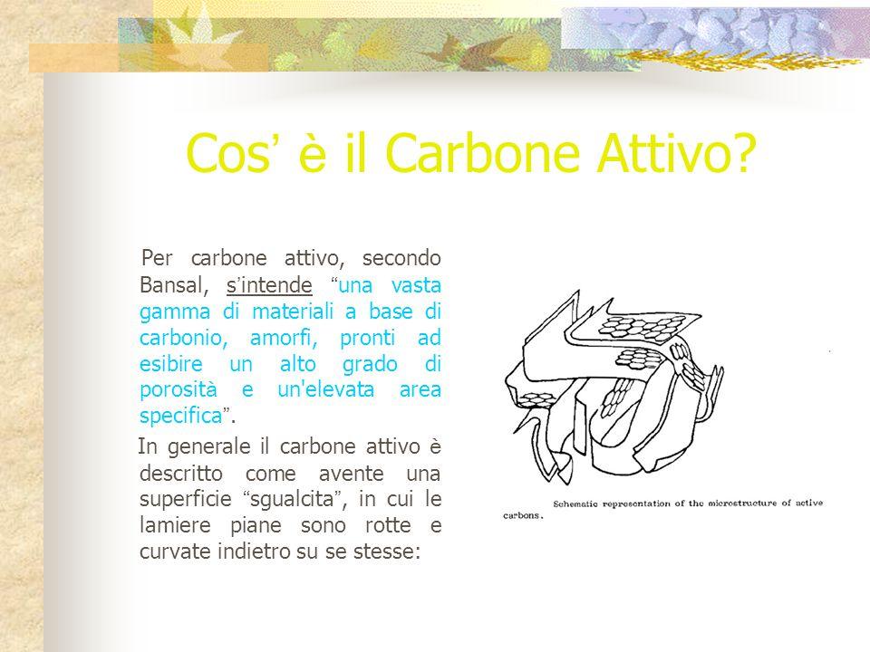 Cos' è il Carbone Attivo