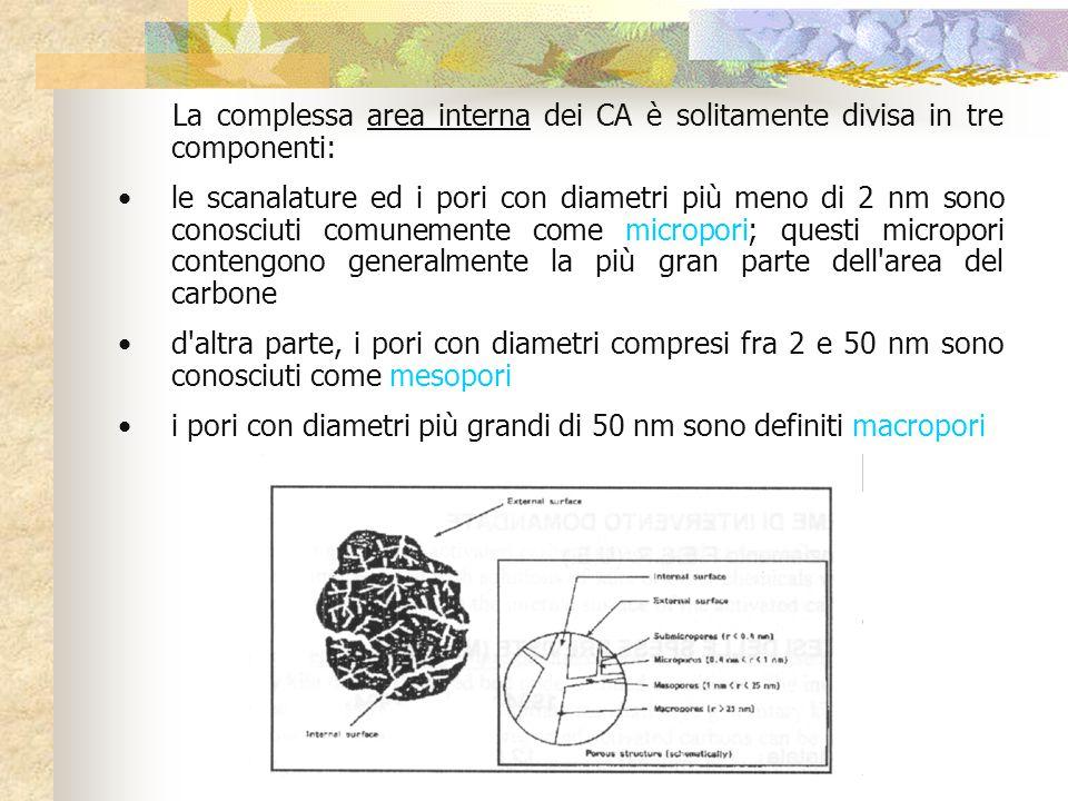 La complessa area interna dei CA è solitamente divisa in tre componenti: