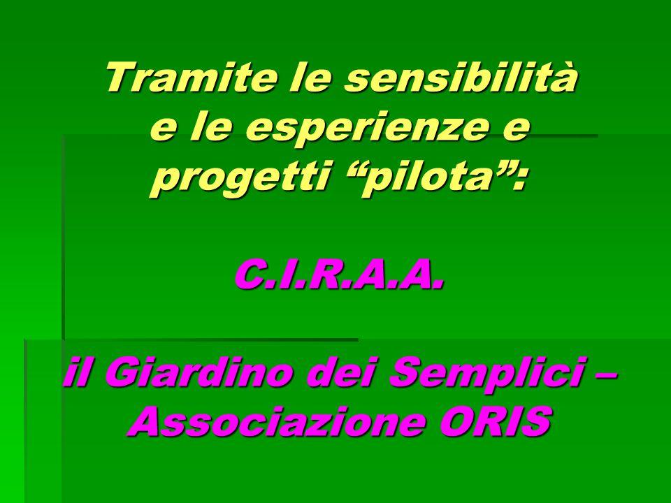 Tramite le sensibilità e le esperienze e progetti pilota : C. I. R. A