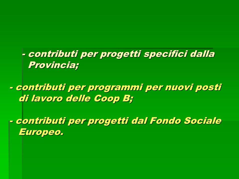 - contributi per progetti specifici dalla Provincia; - contributi per programmi per nuovi posti di lavoro delle Coop B; - contributi per progetti dal Fondo Sociale Europeo.