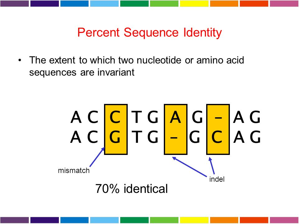 Percent Sequence Identity