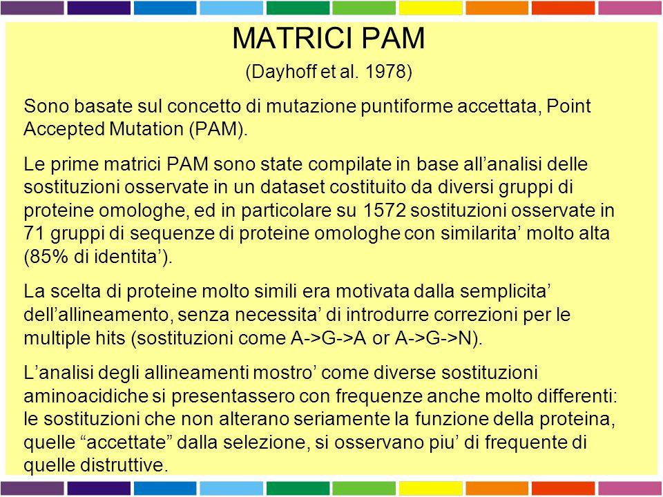 MATRICI PAM (Dayhoff et al. 1978) Sono basate sul concetto di mutazione puntiforme accettata, Point Accepted Mutation (PAM).