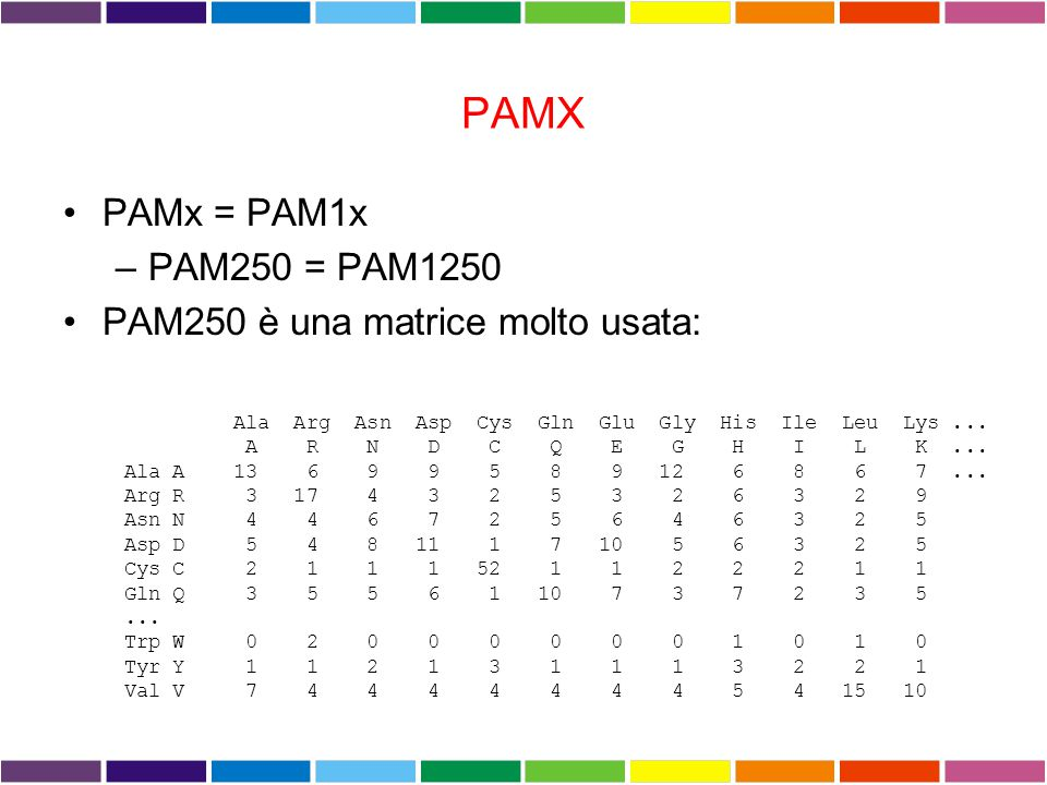 PAMX PAMx = PAM1x PAM250 = PAM1250 PAM250 è una matrice molto usata: