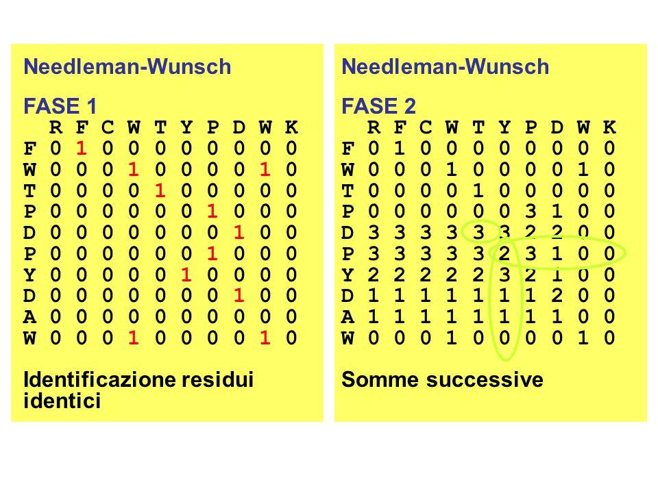 Needleman-Wunsch FASE 1. R F C W T Y P D W K. F 0 1 0 0 0 0 0 0 0 0. W 0 0 0 1 0 0 0 0 1 0. T 0 0 0 0 1 0 0 0 0 0.