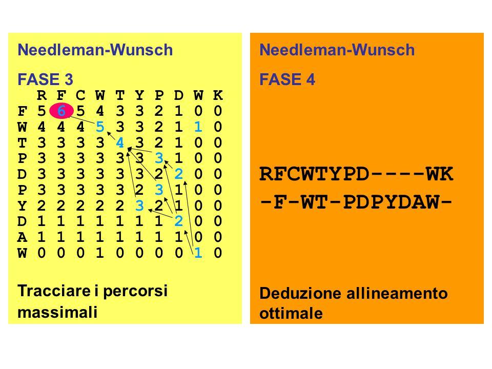 RFCWTYPD----WK -F-WT-PDPYDAW- Needleman-Wunsch Needleman-Wunsch FASE 3