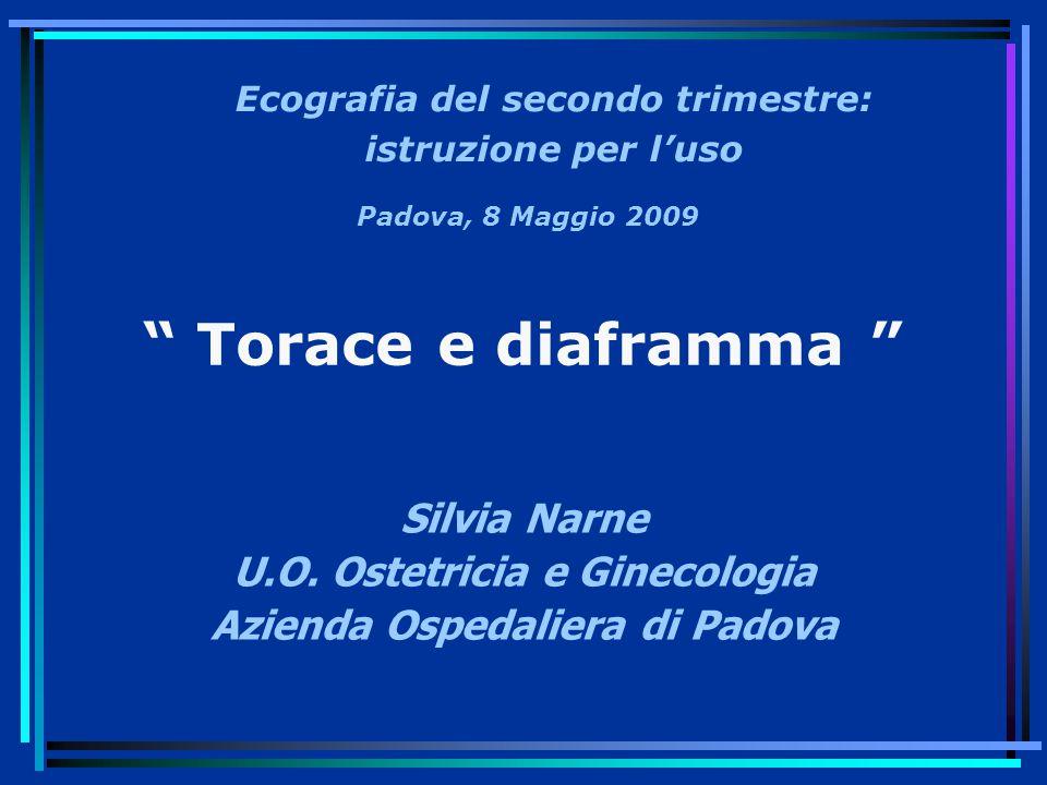 Torace e diaframma Silvia Narne U.O. Ostetricia e Ginecologia