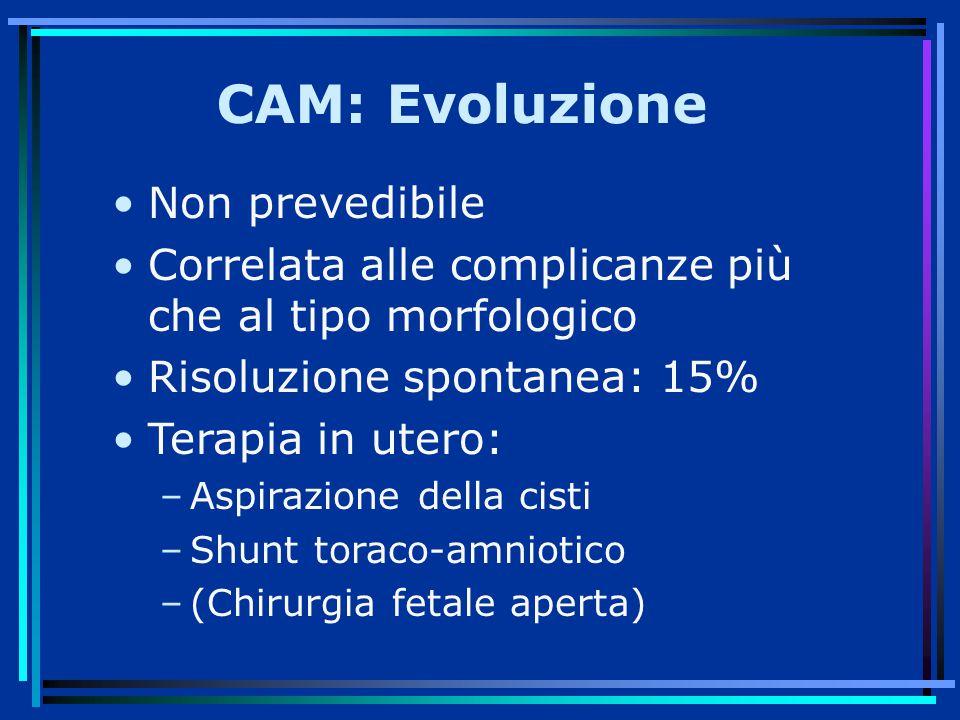 CAM: Evoluzione Non prevedibile