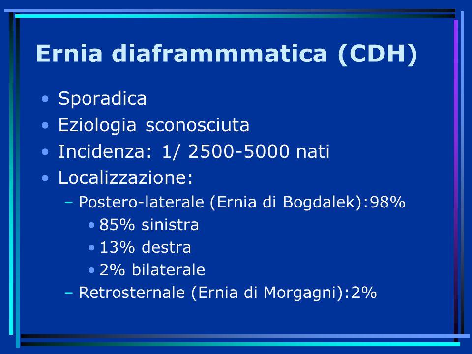 Ernia diaframmmatica (CDH)