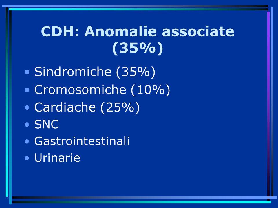 CDH: Anomalie associate (35%)