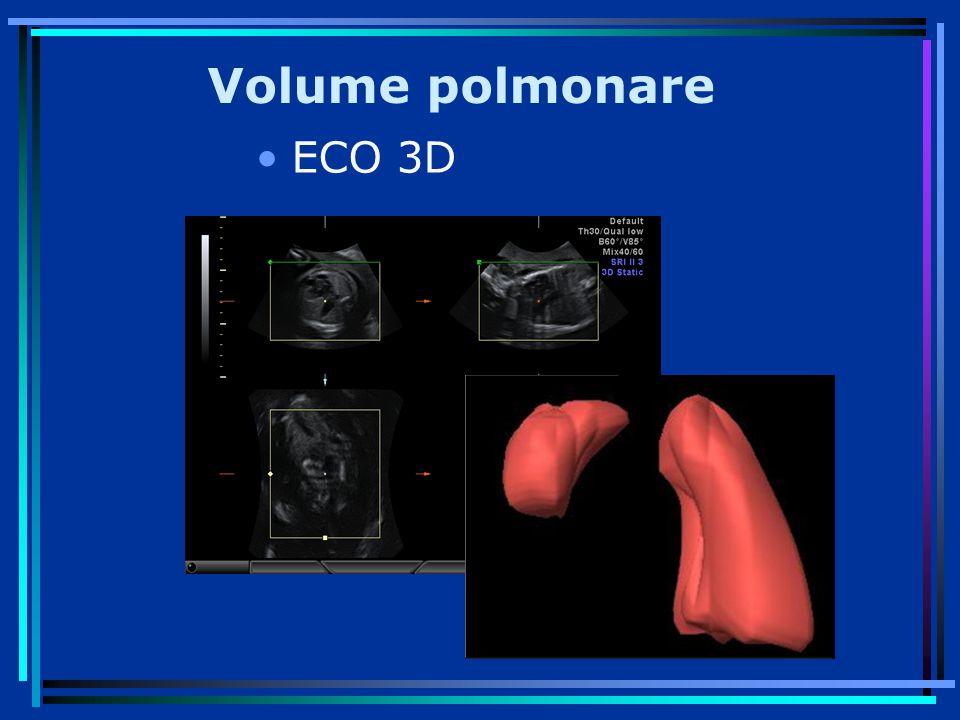 Volume polmonare ECO 3D