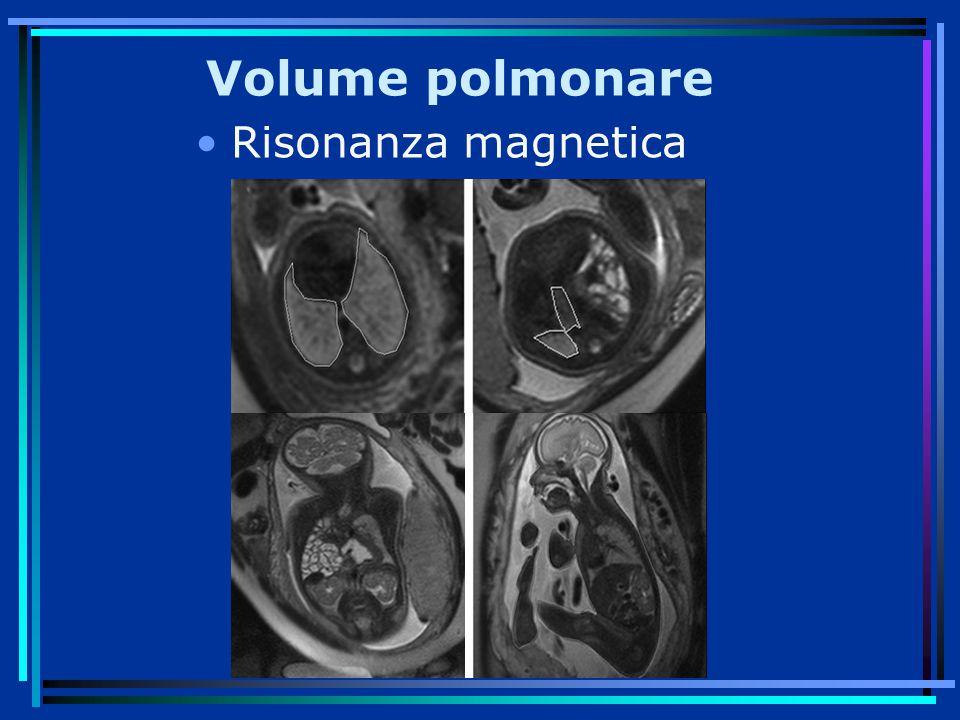 Volume polmonare Risonanza magnetica