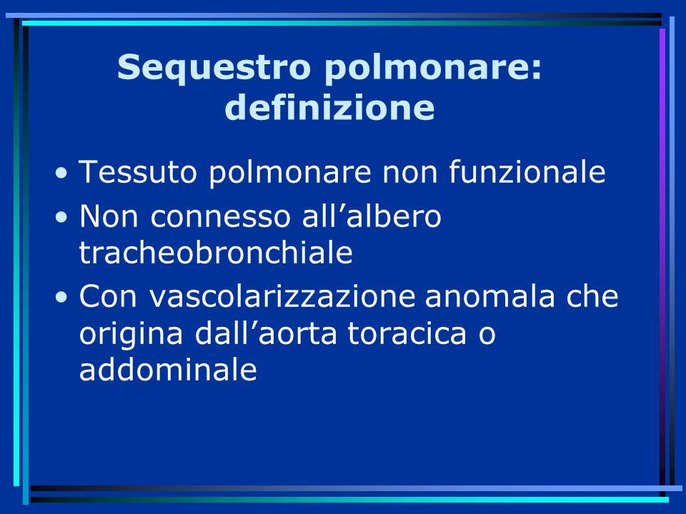 Sequestro polmonare: definizione
