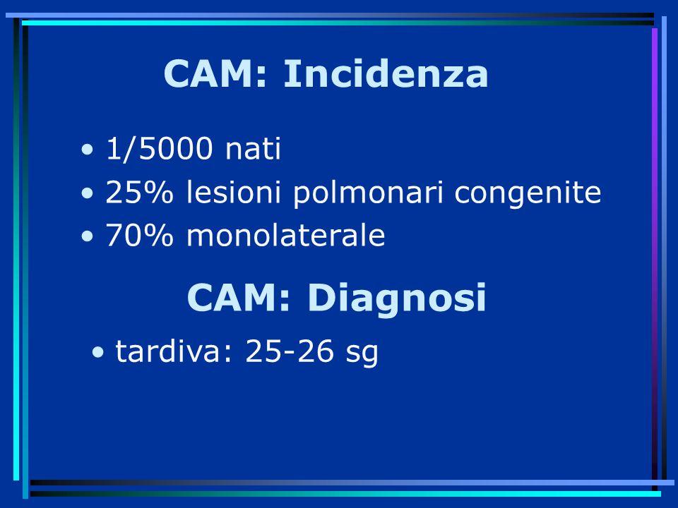 CAM: Incidenza CAM: Diagnosi