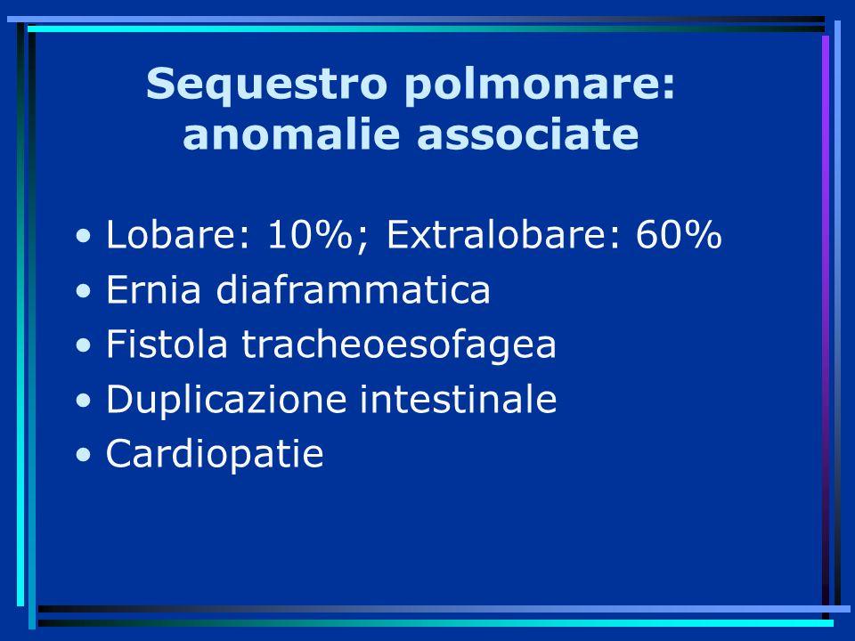 Sequestro polmonare: anomalie associate