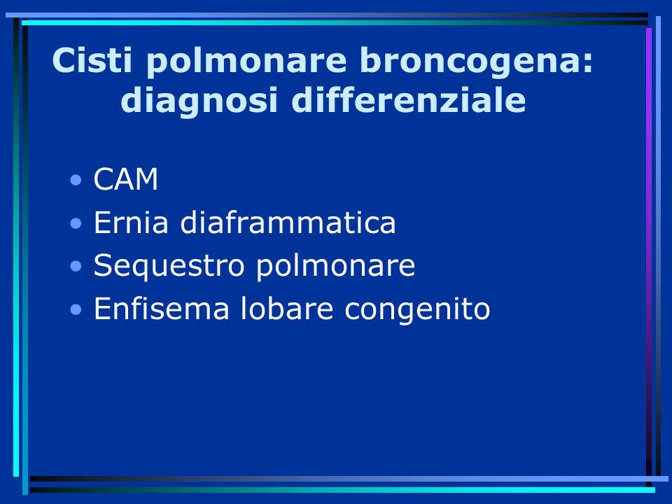 Cisti polmonare broncogena: diagnosi differenziale