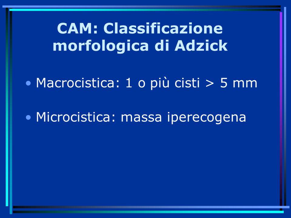 CAM: Classificazione morfologica di Adzick