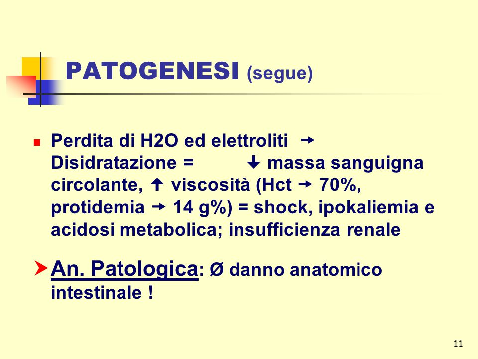 PATOGENESI (segue) An. Patologica: Ø danno anatomico intestinale !