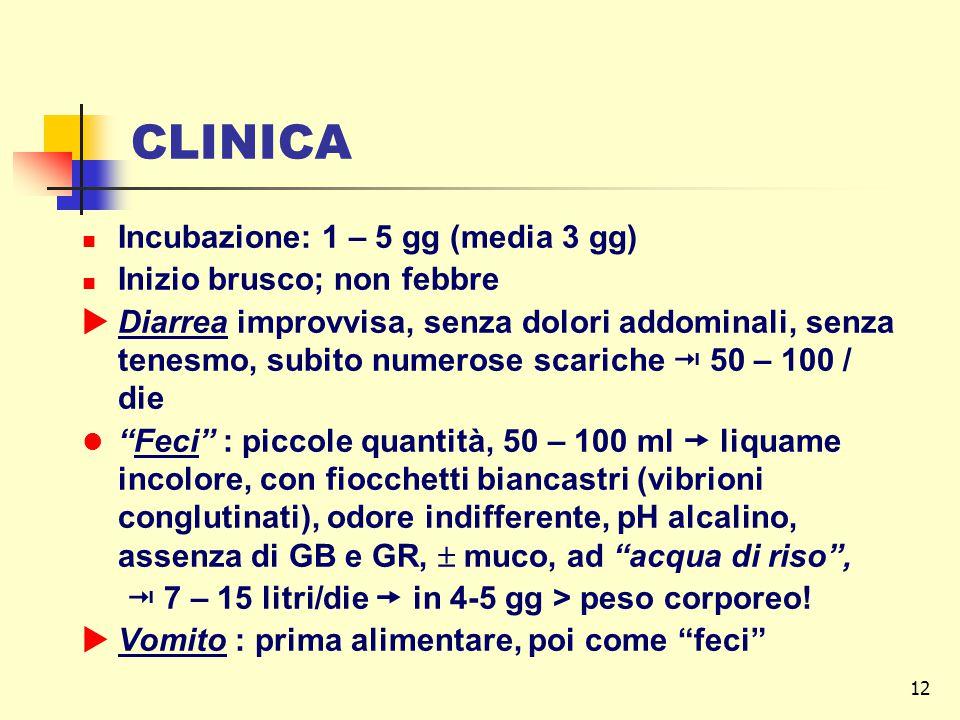 CLINICA Incubazione: 1 – 5 gg (media 3 gg) Inizio brusco; non febbre