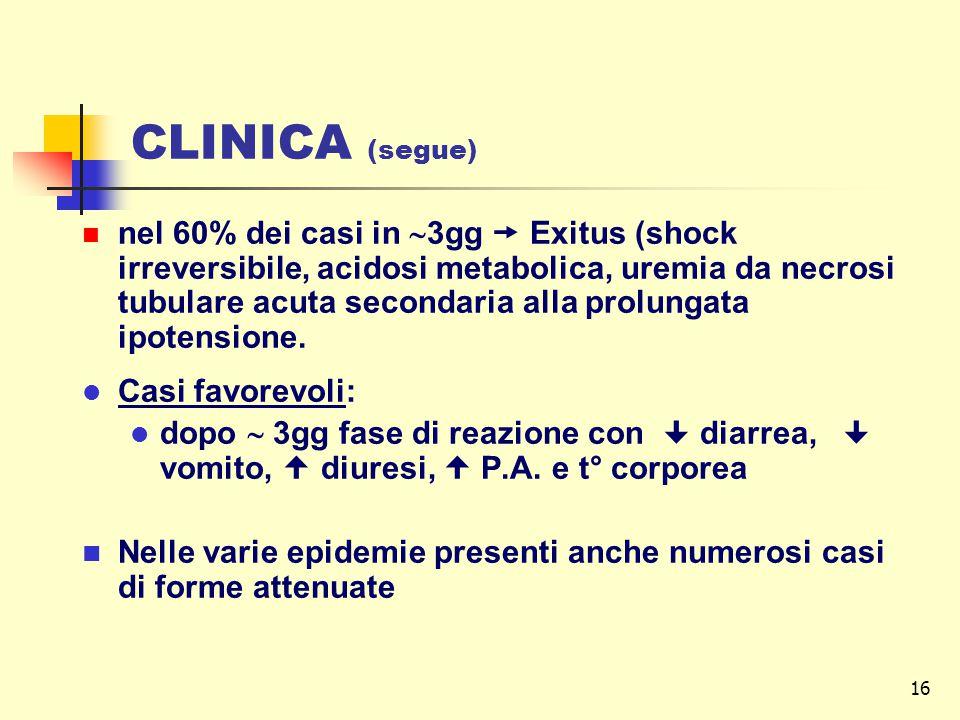CLINICA (segue)
