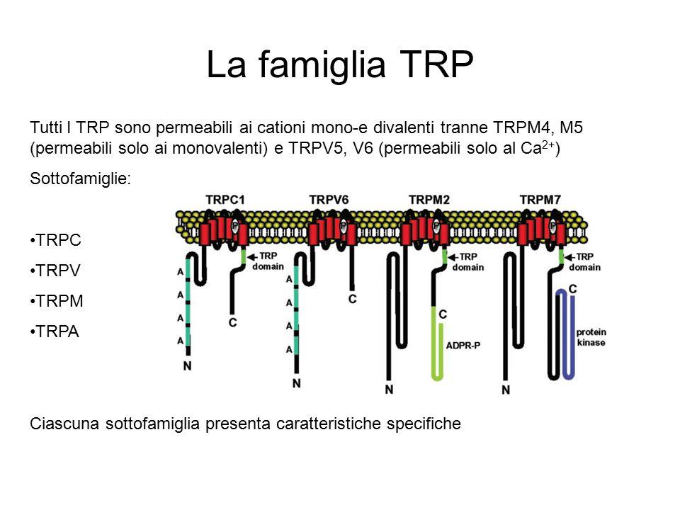 La famiglia TRP