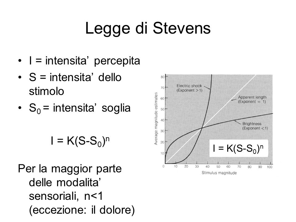 Legge di Stevens I = intensita' percepita S = intensita' dello stimolo