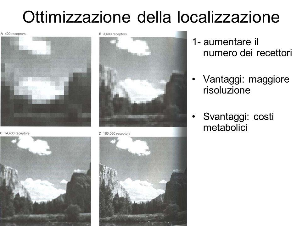 Ottimizzazione della localizzazione