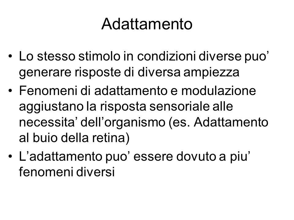 Adattamento Lo stesso stimolo in condizioni diverse puo' generare risposte di diversa ampiezza.