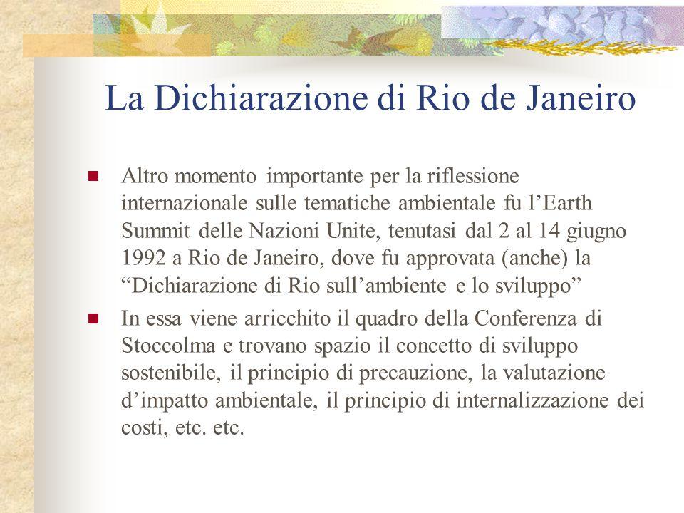 La Dichiarazione di Rio de Janeiro