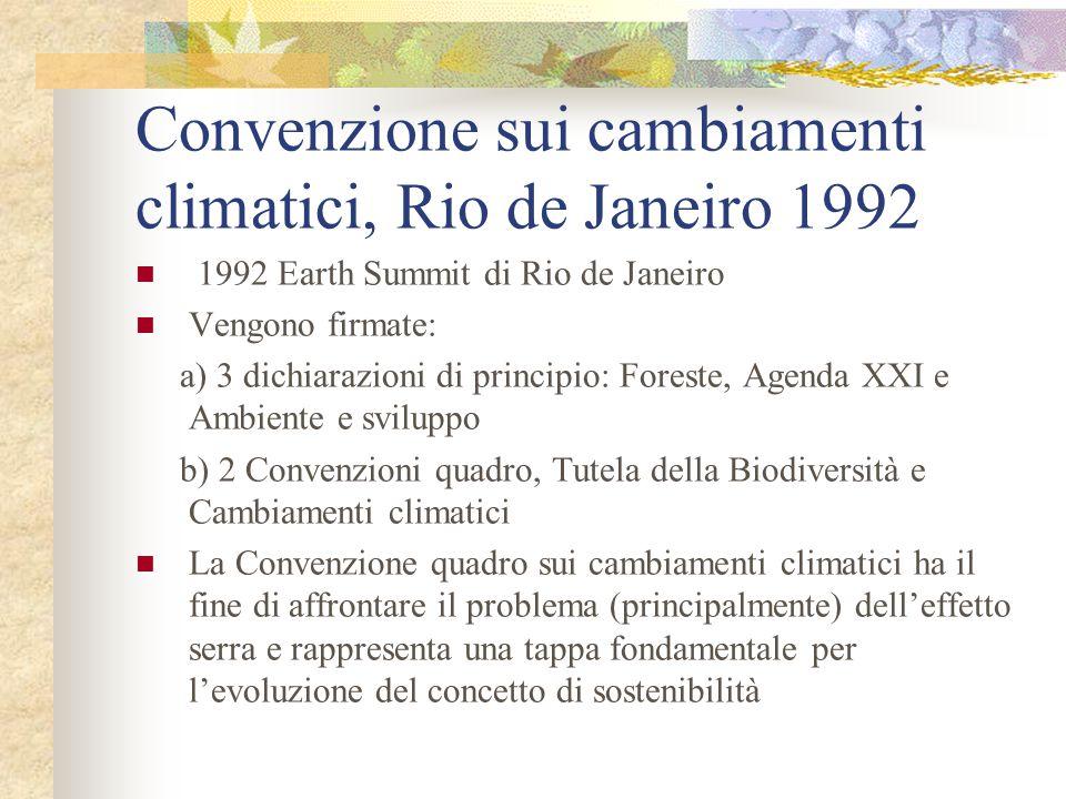 Convenzione sui cambiamenti climatici, Rio de Janeiro 1992