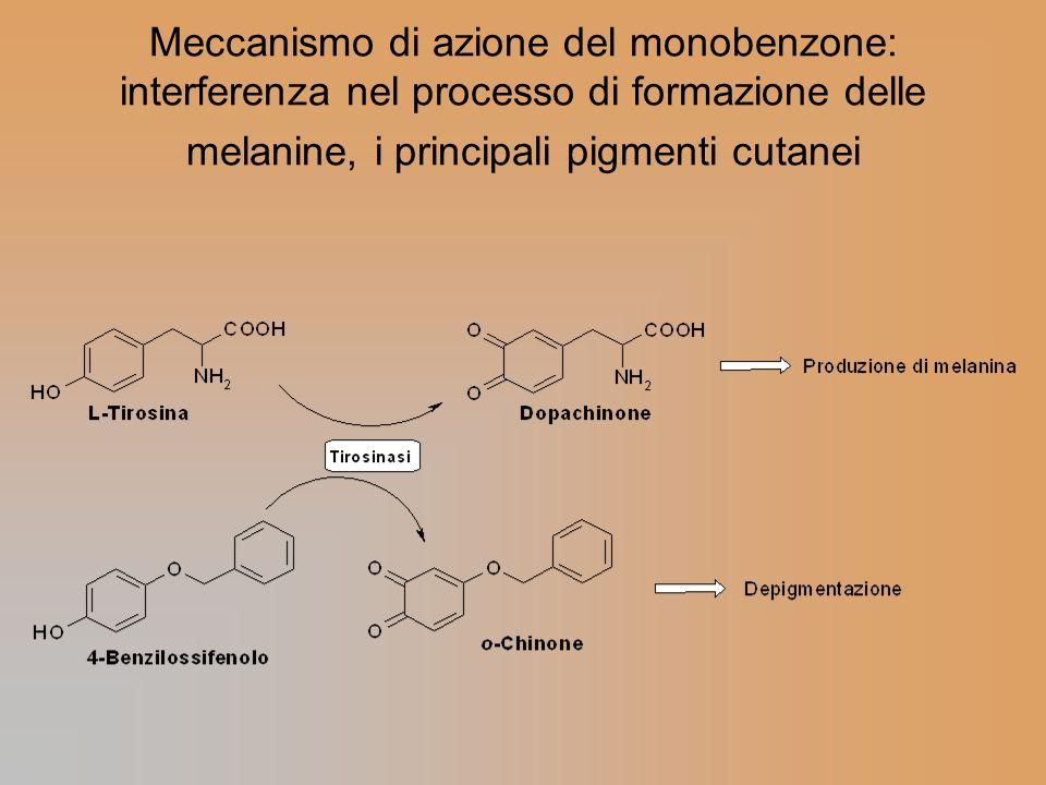 Meccanismo di azione del monobenzone: interferenza nel processo di formazione delle melanine, i principali pigmenti cutanei