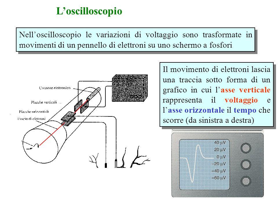 L'oscilloscopio Nell'oscilloscopio le variazioni di voltaggio sono trasformate in movimenti di un pennello di elettroni su uno schermo a fosfori.