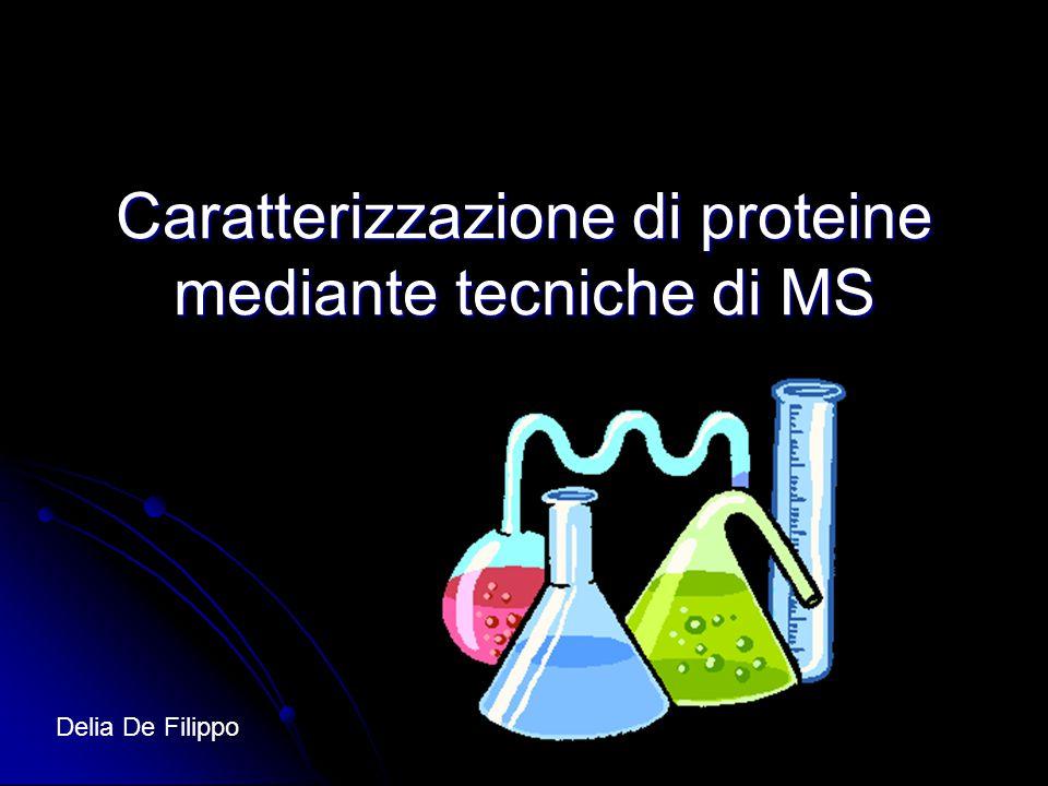 Caratterizzazione di proteine mediante tecniche di MS