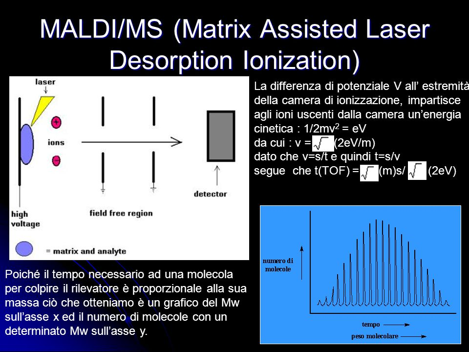 MALDI/MS (Matrix Assisted Laser Desorption Ionization)