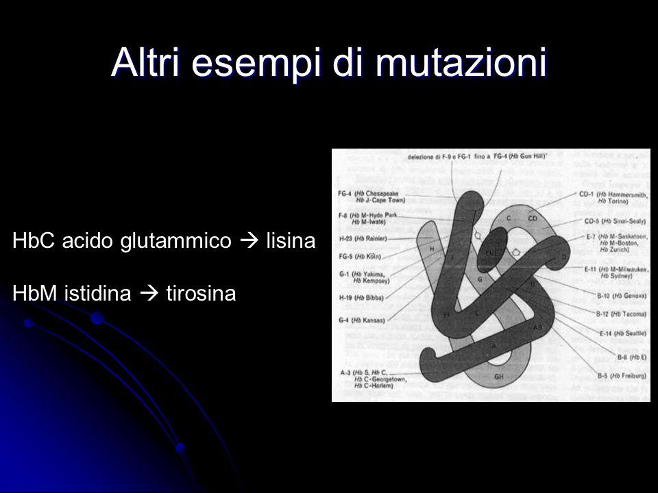 Altri esempi di mutazioni