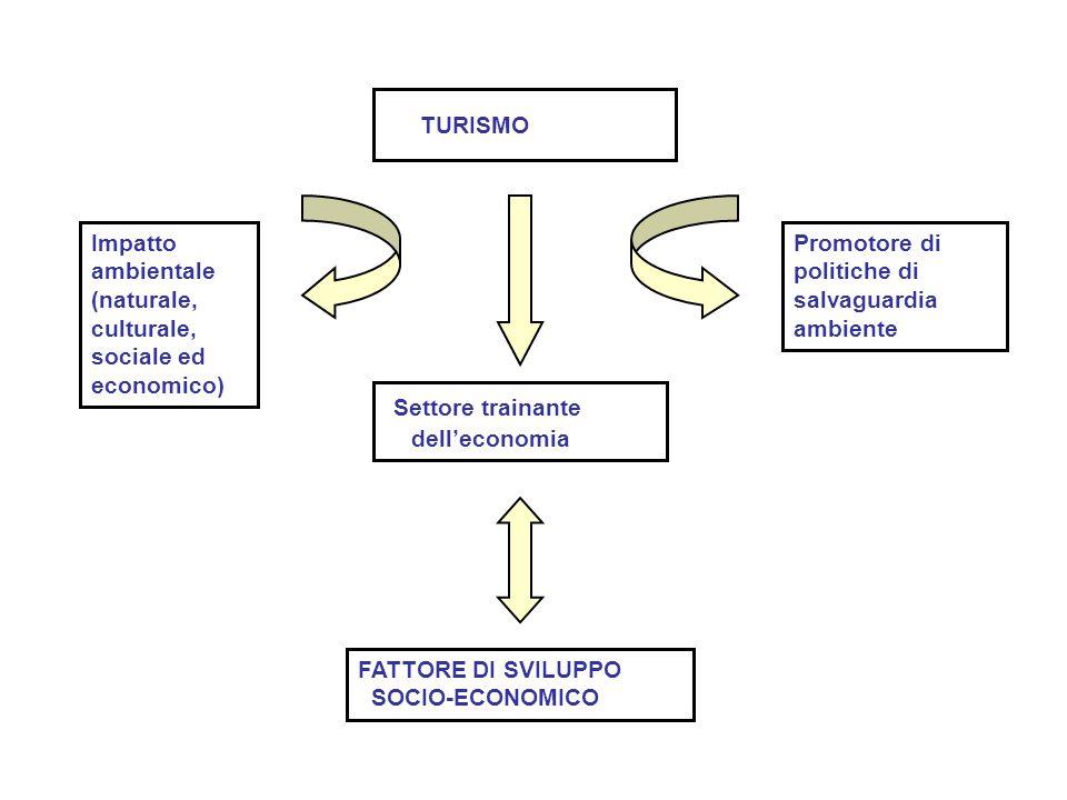 TURISMO Settore trainante Impatto ambientale