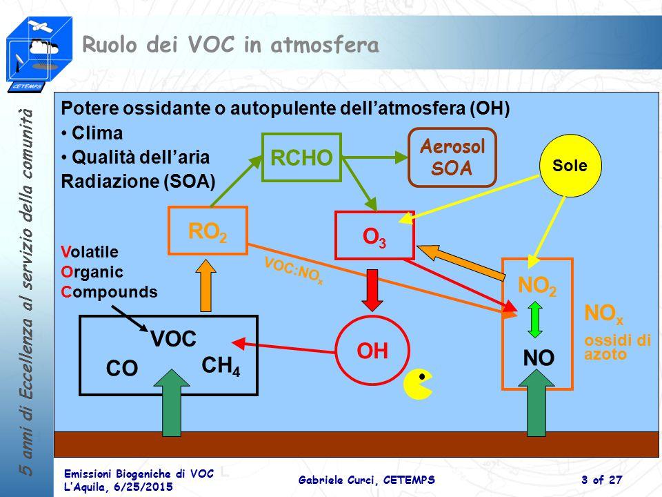Ruolo dei VOC in atmosfera