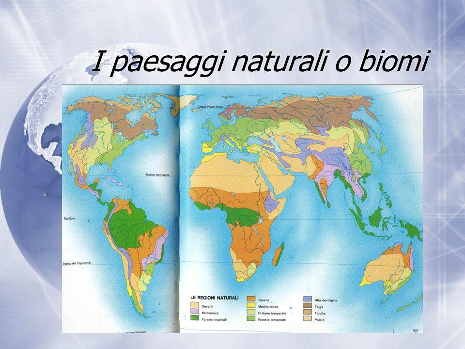 I paesaggi naturali o biomi
