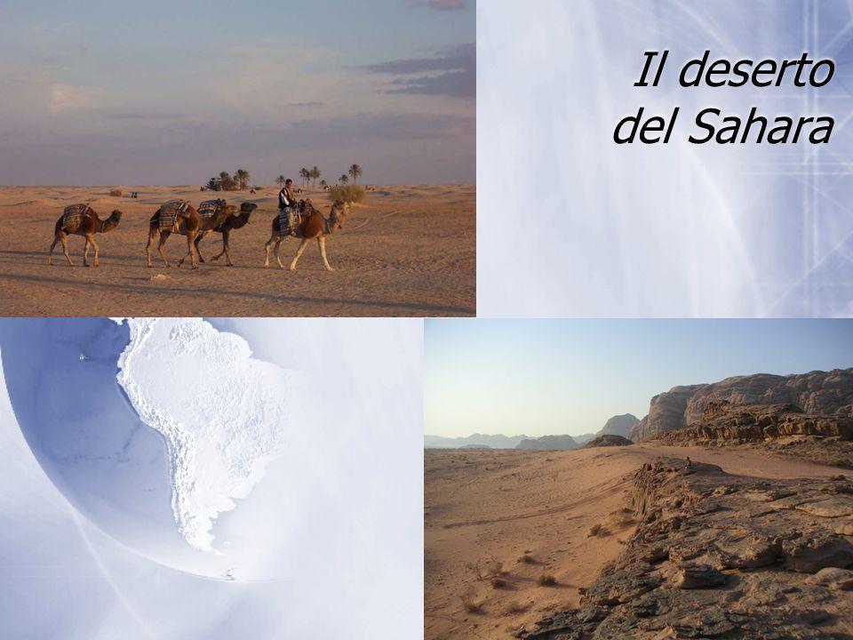 Il deserto del Sahara