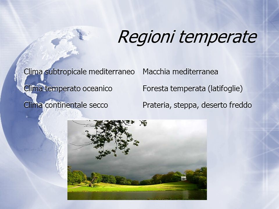 Regioni temperate Clima subtropicale mediterraneo Macchia mediterranea