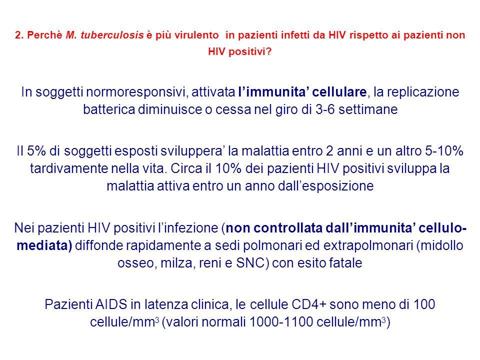 2. Perchè M. tuberculosis è più virulento in pazienti infetti da HIV rispetto ai pazienti non HIV positivi