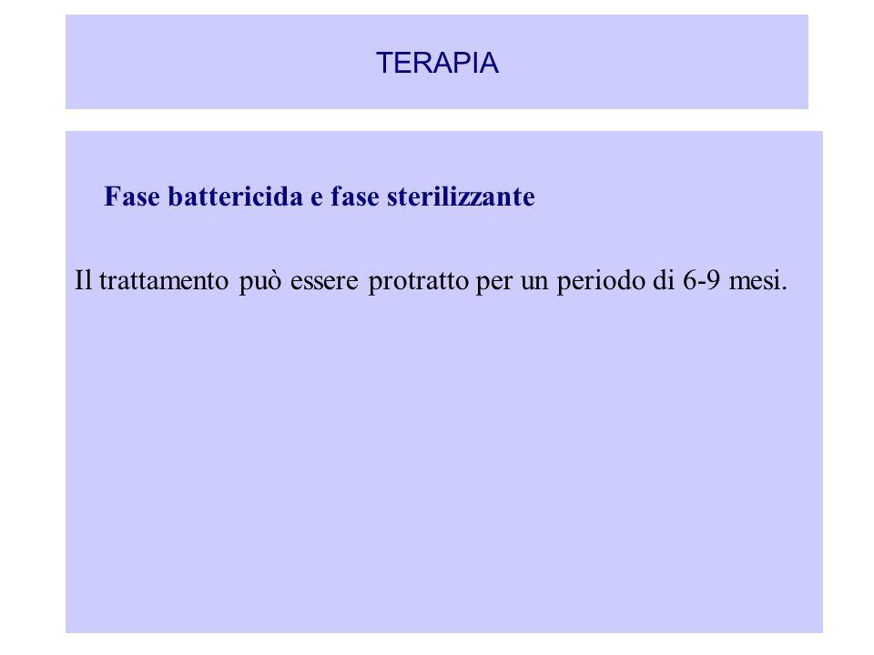 TERAPIA Fase battericida e fase sterilizzante.
