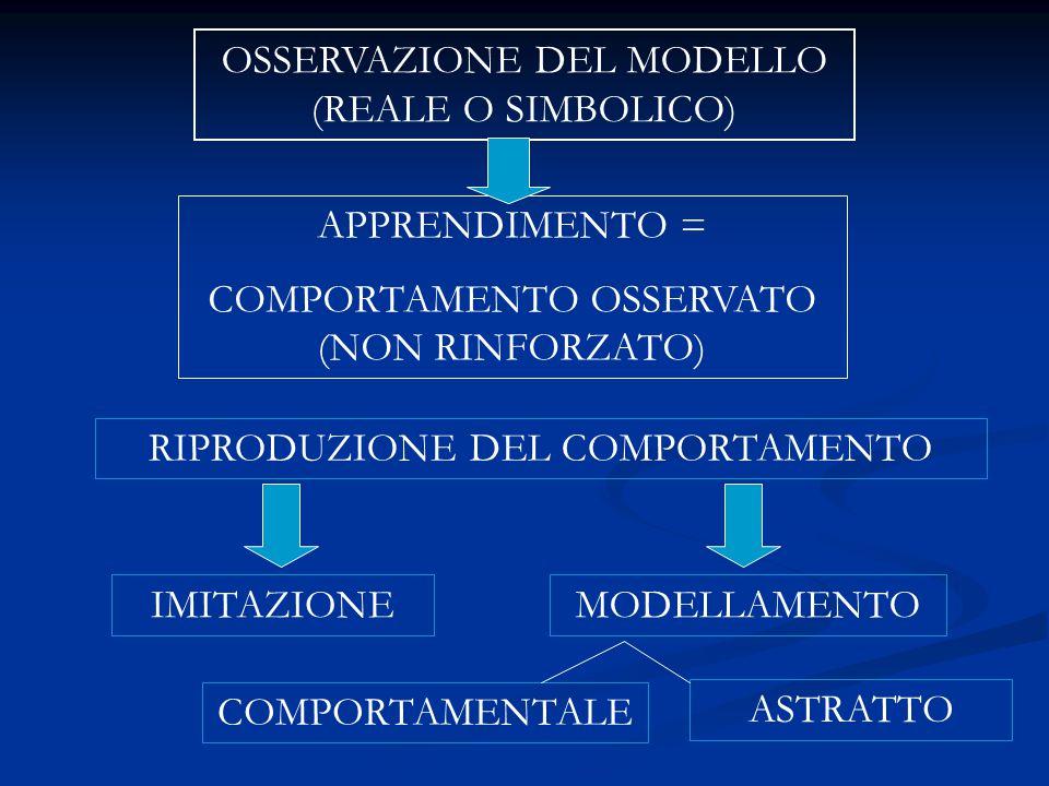 OSSERVAZIONE DEL MODELLO (REALE O SIMBOLICO)