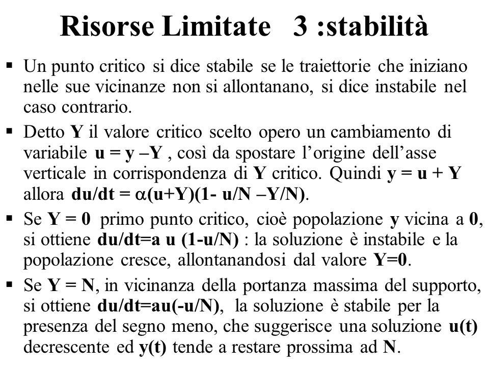 Risorse Limitate 3 :stabilità