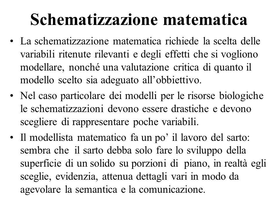 Schematizzazione matematica
