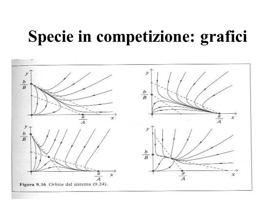 Specie in competizione: grafici